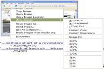 Mozilla Image Zoom