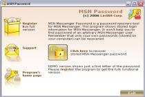 MSN Messenger Password