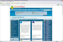 Captura principal de Internet Explorer