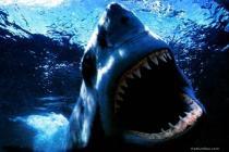 Descargar El Gran Tiburón