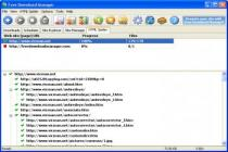 Descargar Free Download Manager 3.9.2