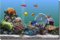 Descargar SereneScreen Marine Aquarium para Windows