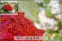 Imagenes de Mosaic Creator