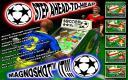 Descargar WS Pinball Soccer Stars