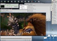 VLC Media Player 2.0.0 339_5