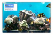 XP Tools Software Aquarium