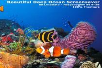 Beautiful Deep Ocean Screensaver