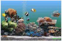 Animated 3D Aquarium